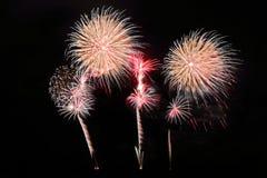 Festive colorful fireworks on night sky background. Celebratory holiday.  royalty free stock images