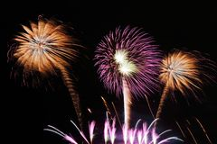 Festive colorful fireworks on night sky background. Celebratory holiday.  royalty free stock image