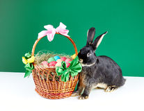Festive composition rabbit and a basket with Easter eggs Stock Photos