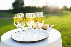 Festive concept, champagne glasses on wedding table Stock Image