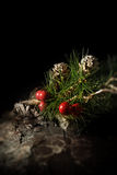 Festive Concept Stock Photography