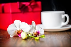 Festive concept of Mother's day with greeting red box, orchid fl Royalty Free Stock Images