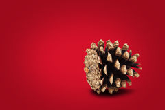 Festive cone on red background Royalty Free Stock Photography