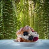 Festive cream puff dessert with berries Stock Photos