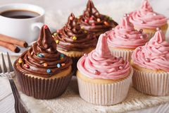 Festive cupcakes with cream on the table close-up. horizontal Royalty Free Stock Photography