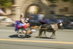 Festive decorated carriage and miniature horse make its way down main street during a Fourth of July parade in Ojai, CA Stock Photo