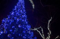 Festive decorated Christmas tree with blue led lights royalty free stock image