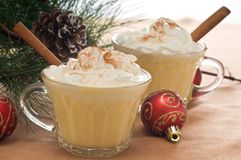 Festive Drink. Of eggnog with whipped cream and cinnamon Stock Photography