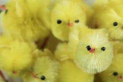 Festive Easter Chenille Chicks. Festive yellow Easter Chenille Chicks Stock Photography