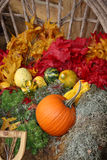 Festive Fall. Beautiful and festive setting perfect for Fall, Autumn, Thanksgiving or Halloween imagery Stock Photography