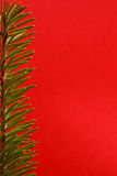 Festive fir background Royalty Free Stock Images