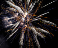 Festive fireworks. Royalty Free Stock Image