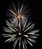 Festive fireworks. stock photos
