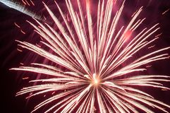 Festive fireworks. royalty free stock photo