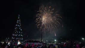 Festive fireworks in honor of happy new year. Crowd of people watching fireworks. Festive fireworks in honor of Happy New Year 2019. Crowd of people watching and stock footage