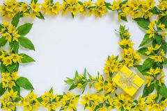 Festive flower arrangement on white background. Festive flower arrangement. Flowers loosestrife lysimachia and gift in yellow packing on white textured Royalty Free Stock Photos
