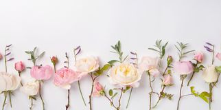 Festive flower composition on the white wooden background. Overhead view. Festive flower English rose composition on the white background. Overhead view. Copy Stock Images