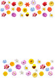 Festive frame of colorful flowers. Collage - frame with flowers for holiday cards royalty free illustration