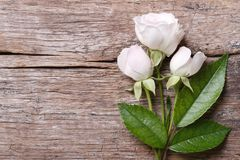 Festive frame of delicate pink roses on a wooden background Stock Photography