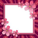 Festive frame with pink 3d sakura blossom. Beautiful floral trendy romantic frame with pink 3d sakura cutting paper, japanese cherry tree. Stylish modern festive Royalty Free Stock Images
