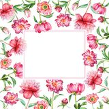 Festive frame with red flowers. Watercolor floral design, pink and red flowers with green leaves with empty space for text isolated on white background. Useful Stock Photography