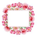 Festive frame with red flowers. Watercolor floral design, pink and red flowers with green leaves with empty space for text isolated on white background. Useful Stock Image