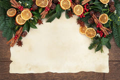 Festive Fruit Border Stock Image