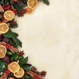 Festive Fruit Stock Image