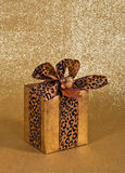 Festive gift wrapped present Royalty Free Stock Photo
