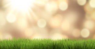 Festive golden garden 3d rende. R illustration illustration Royalty Free Stock Photography