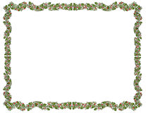 Festive Holly Border. Vector graphic holly border, isolated Stock Photography