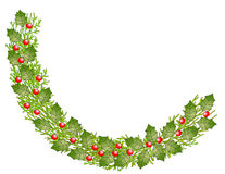Festive Holly Bough. Vector graphic holly bough, isolated Royalty Free Stock Photography