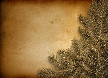 Festive invitation or greeting with firtree Royalty Free Stock Photo