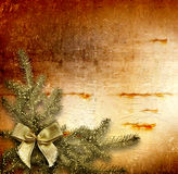 Festive invitation or greeting with firtree Stock Images