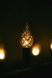 Festive lights Royalty Free Stock Photography
