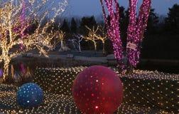 Festive lights Stock Images