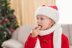 Festive little boy eating a cookie Royalty Free Stock Photo
