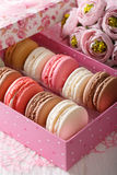 Festive macaroons in a gift box and flowers close-up. vertical Stock Photos