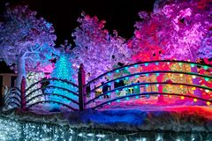 Festive magic illumination. In night park there are beautiful colorful garlands in snow on trees. Festive magic illumination. In night park there are beautiful Stock Image