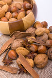 Festive Mixed Nuts n Spice Royalty Free Stock Image
