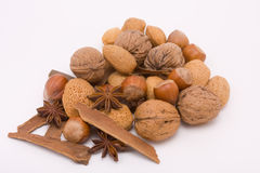 Festive Mixed Nuts n Spice Stock Image