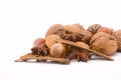Festive Mixed Nuts n Spice Royalty Free Stock Photos