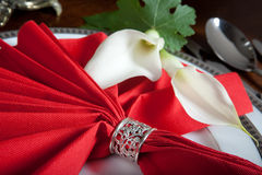 Festive napkins Stock Image