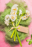 Festive Narcissus flowers bunch with blank tag Royalty Free Stock Images