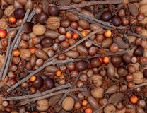 Festive natural background of mixed nuts, spices and crab apples Royalty Free Stock Photo