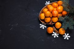Festive new year composition with tangerines pine cones. Greens christmas tree Royalty Free Stock Image