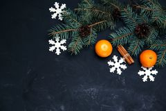 Festive new year composition with tangerines pine cones. Greens christmas tree Stock Photography