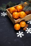 Festive new year composition with tangerines in box. Festive new year composition with tangerines pine cones greens christmas tree Royalty Free Stock Photography