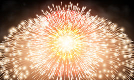 Festive night fireworks. Royalty Free Stock Photos