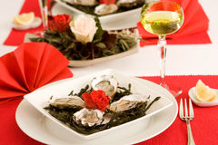 Festive oysters Stock Photo